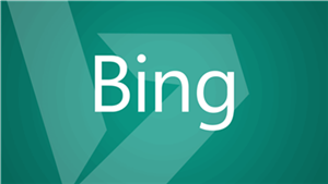 Bing.com runs on .NET Core 2.1